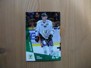 Hockey - Anton Hedman mm.