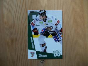 Hockey - Daniel Rahimi mm.